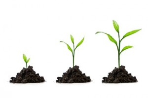 spiritual-growth