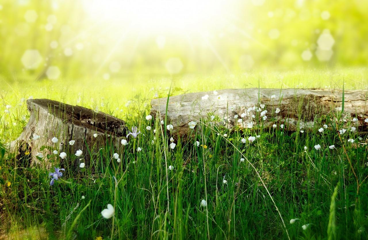 An Easter Sunday Meditation
