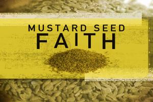 mustard-seed-faith